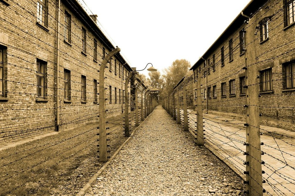 auschwitz, extermination camp, alley-Visiting Concentration Camps
