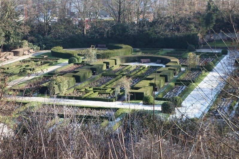 rose garden humboldthainpark berlin-min