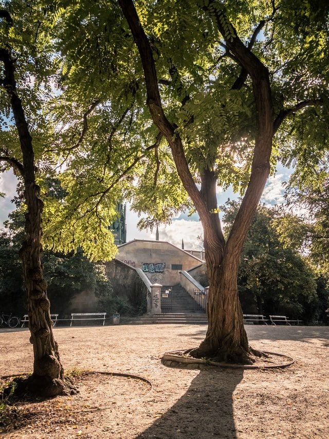viktoriapark berlin tours